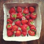 Strawberry Roundup